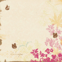 Flutterby_front_abdc