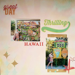 Hawaii_556x558